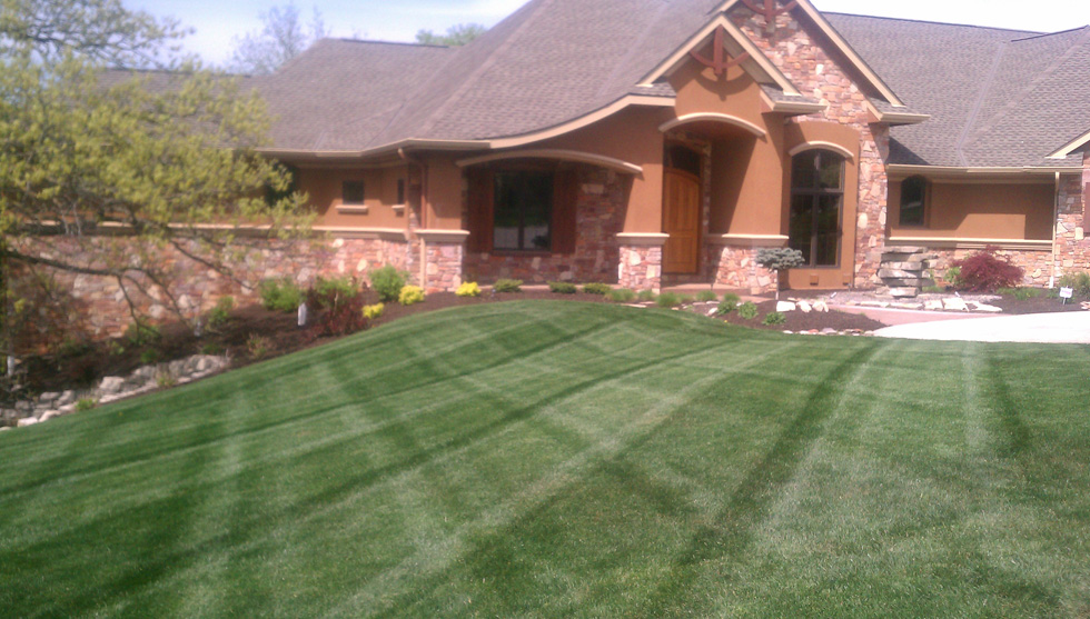 Swift Green Lawn Care